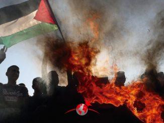 Declaración de la LIS Israel Palestina